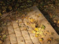 Лестница в Царицыно * пейзаж * цифровая фотография