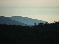 Небо, горы, сосны * пейзаж * цифровая фотография