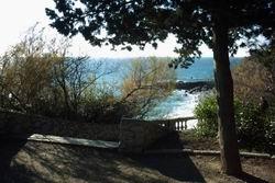 Парк над морем * пейзажи парков и садов * цифровая фотография