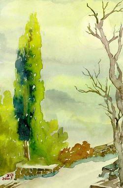 Кипарис в Мисхорском парке * пейзажи парков и садов * акварель